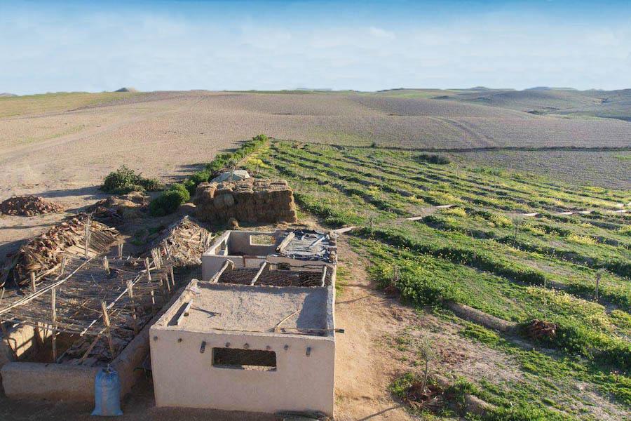 permaculture Maroc